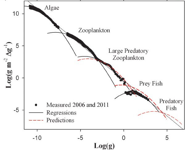 Lake-Superior-normalized-biomass-size-spectra-A-Size-spectra-by-trophic-position-with_W640